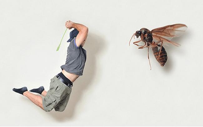 Как выгнать мух из квартиры