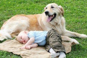 Укусы блох у детей: симптомы и лечение